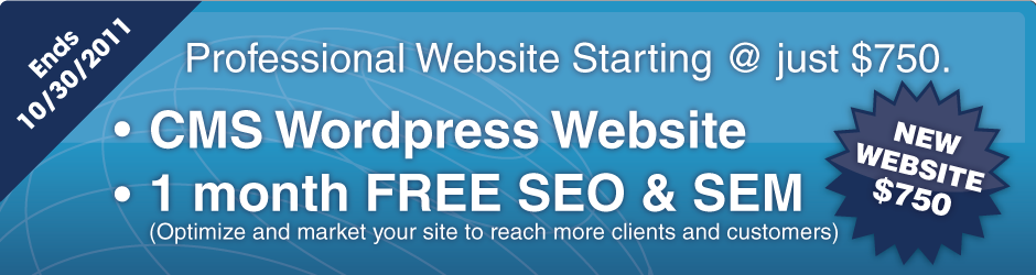 New Website Slider New Website with 1 Month Free SEO and SEM